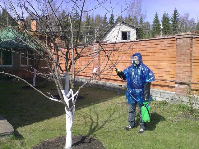 Защита человека при работе с купоросом