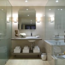 Разновидности стеклянных дверей для душа, ванной и туалета